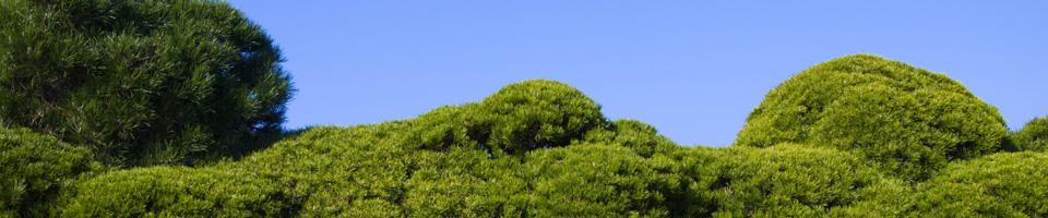 Gartenbau Starnberg wt gartenbau starnberg grünwald solln pullach